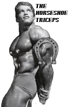 horseshoe triceps