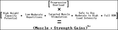 muscle and strength building equation
