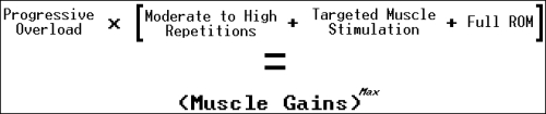 muscle building equation