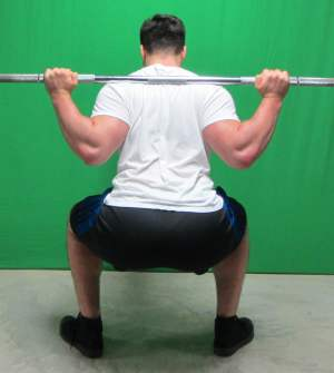 low bar squat position rear view bottom