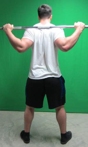 low bar squat position standing rear view