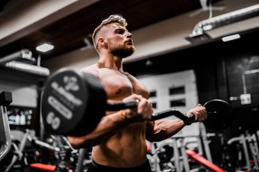 Barbell Curl - Isolation Exercise