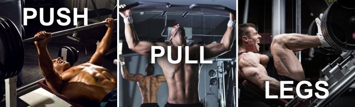 beginner push pull legs split routine
