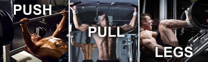beginner push pull legs split routine