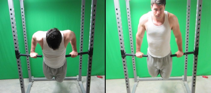 pronated grip dips
